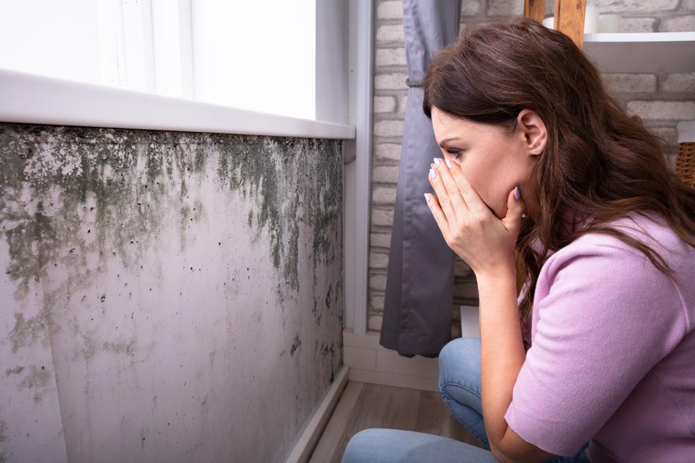 Des signes qui pourraient indiquer un problème d'humidité dans votre maison